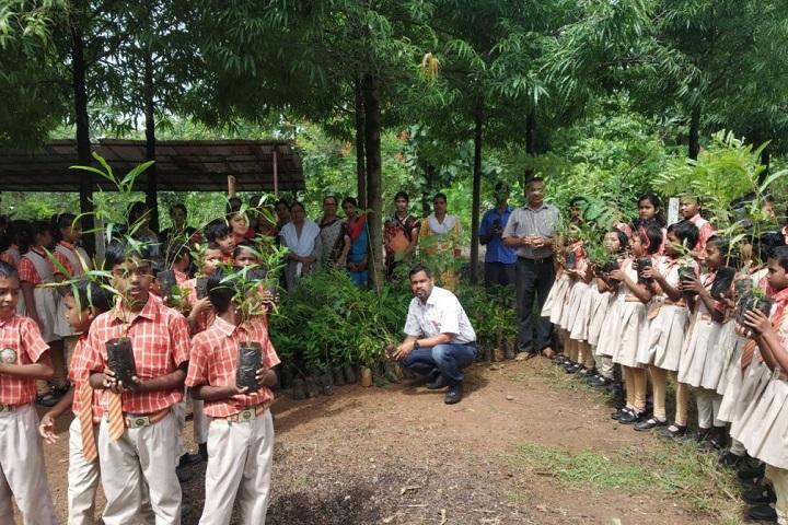 Green Field School-Plantation