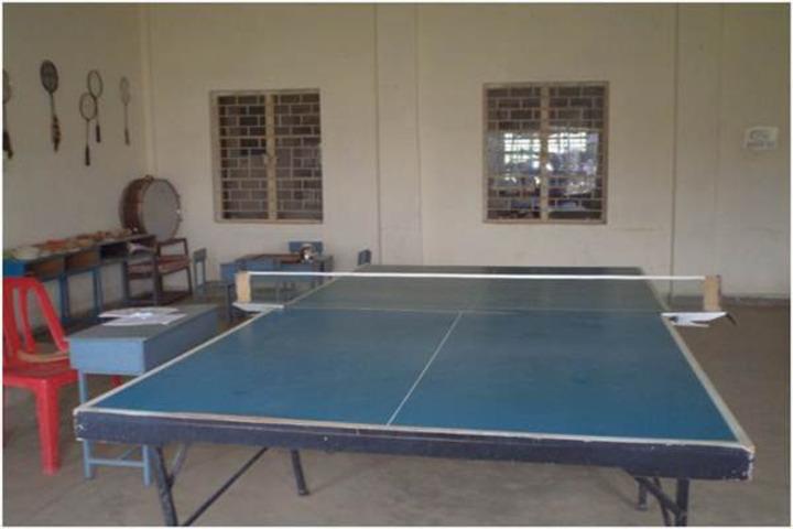 Maharishi Vidya Mandir-Indoor Games