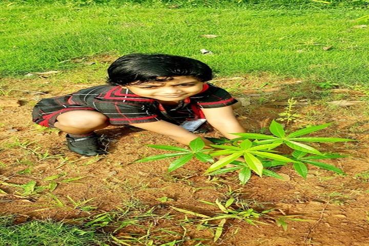 O D M Public School-Tree-Plantation