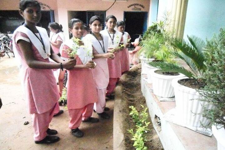 Sri Satya Sai School-Plantation