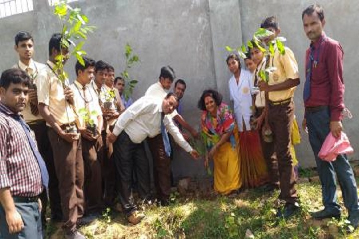 Goethals Public School-Tree Plantation