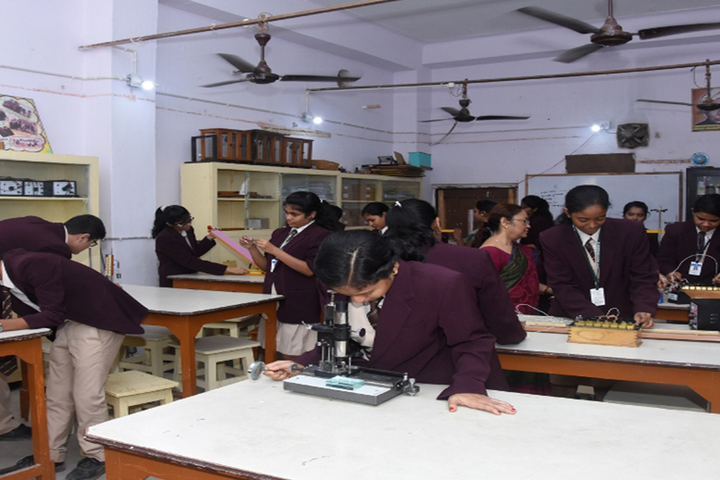 St Xaviers High School-Bio Labs