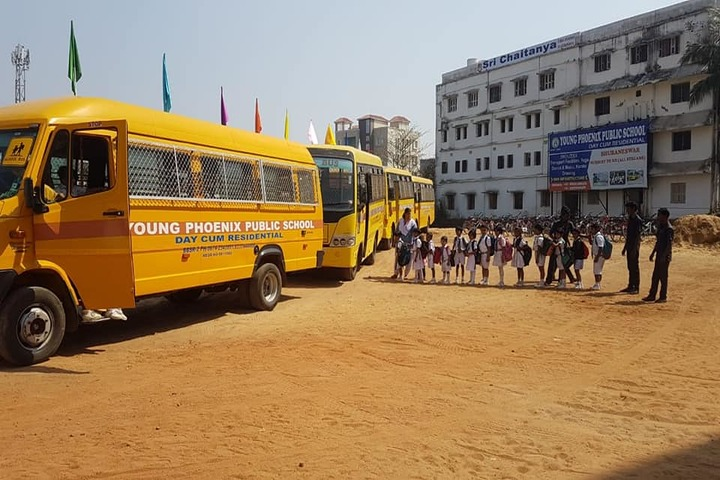 Young Phoenix Public School-Transport
