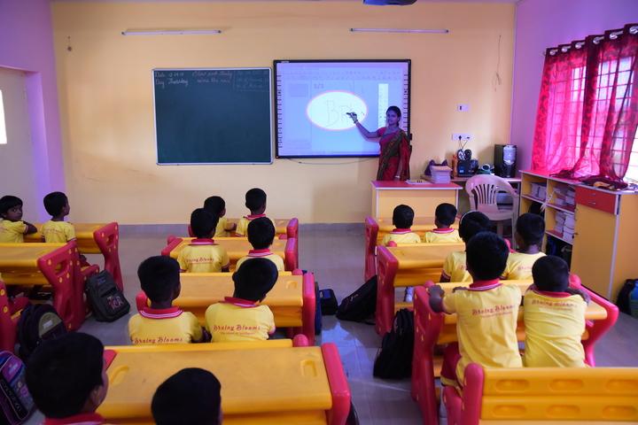 Brainy Blooms Lecole Internationale-Digital Class Room