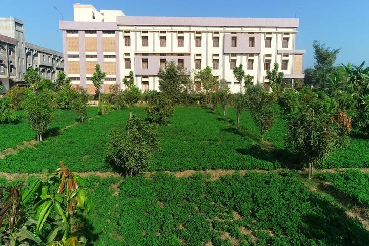 St Joseph Of Cluny School-Garden