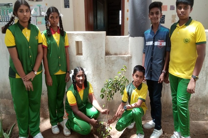Universal Academy High School-Go Green