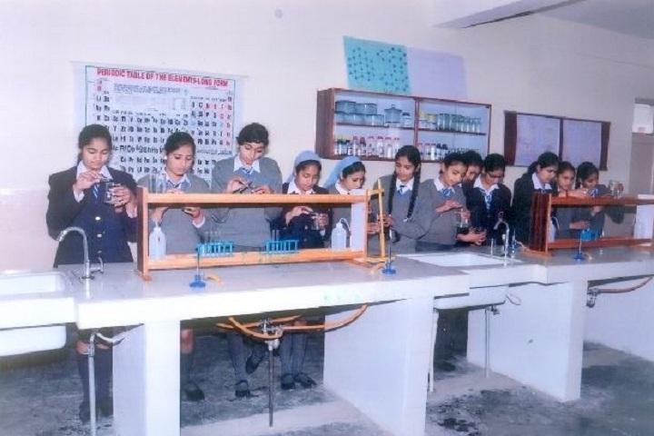 Amarpuri Senior Secondary Public School-Chemistry Lab