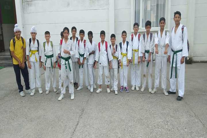 Army Public School-Karate Activity