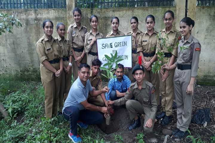 Army Public School-Tree Plantation