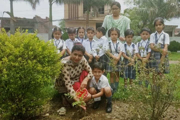 BSMSD Rajput Public School-Plantation