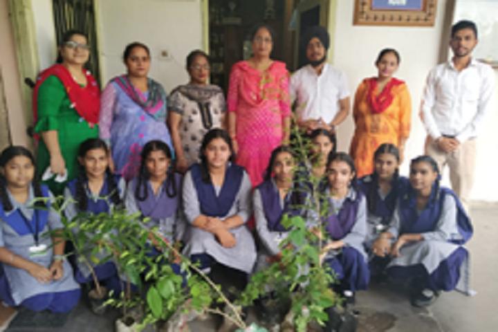 Baba Isher Singh N Public School-Others plantation