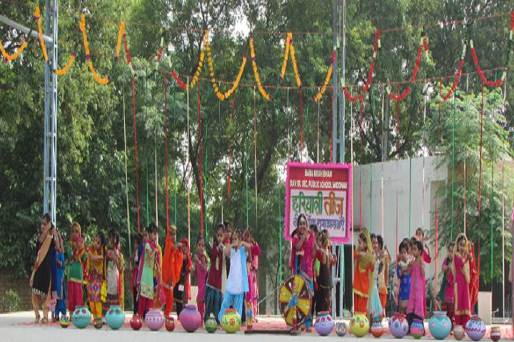 Babu Brish Bhan DAV Public School-Festival Celebrations