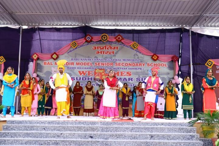 Bal Mandir Model Senior Secondary School-Dance