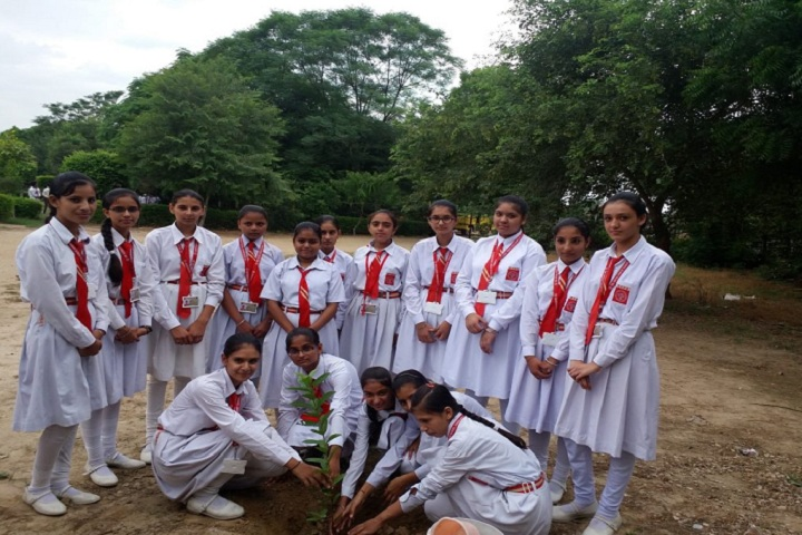 Bal Vatika Public School-Plantation