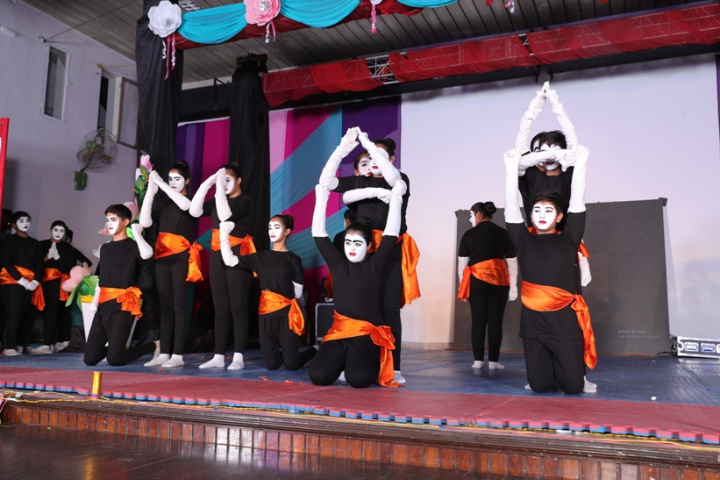 BCM Arya Model Senior Secondary School - Annual Function
