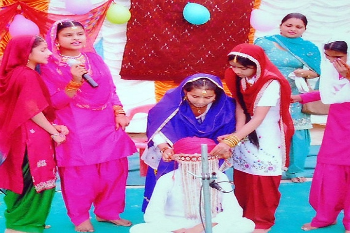 Bhai Daan Singh Akal Academy-Events function