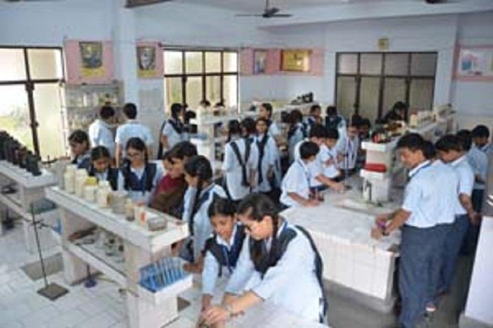 Bhartiya Vidya Bhawan Sachan Lal Public School-Laboratory chemistry