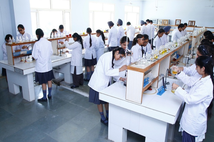 Bhupendra International Public School-Laboratory chemistry