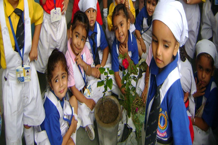 Bibi Kaulan Ji Public School-Others plantation