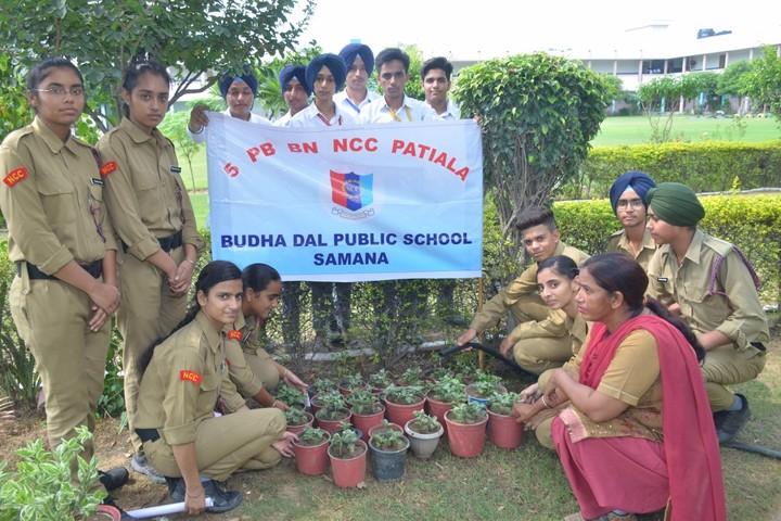 Budha Dal Public School-NCC