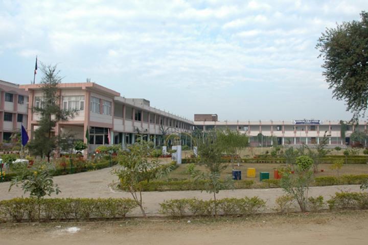 Budha Dal Public School-Play Area