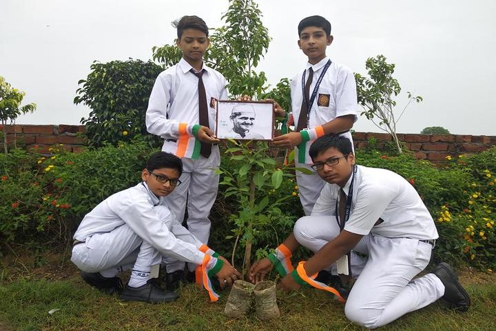 D A V Public School-Tree Plantation