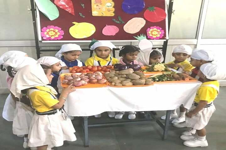 Data Bandhi Chhod Public School-See And Learn