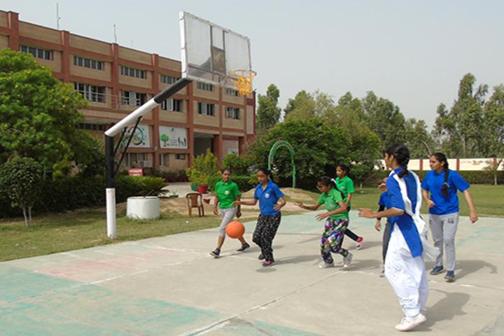 DAV Public School-Sports