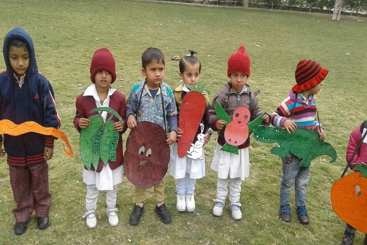 Dayanand Chanan Lal Senior Secondary School-Fancy Dress
