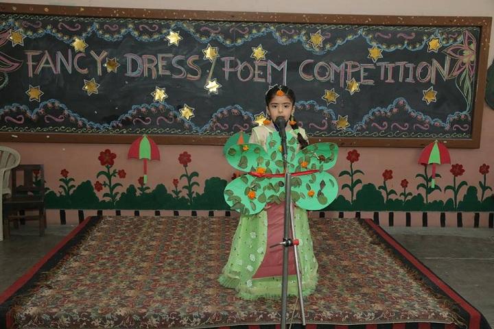 Dayanand Model Senior Secondary School-Fancy Dress