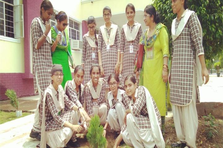 Delhi International School-Tree Plantation