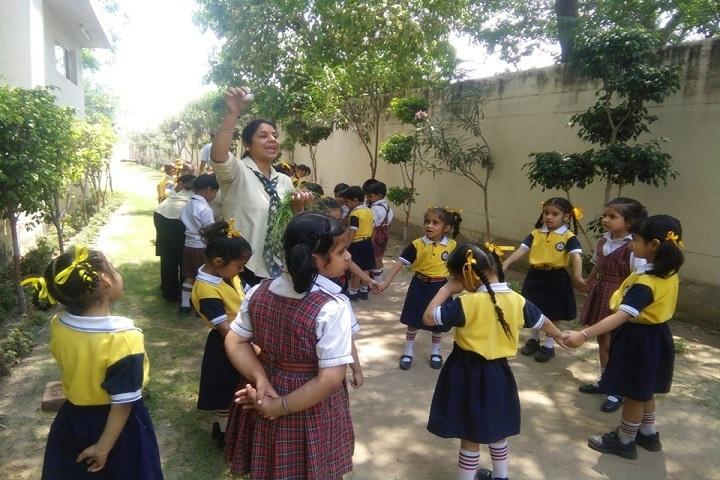 DIPS School-Activities
