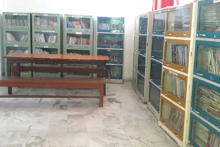 DIPS School-Library