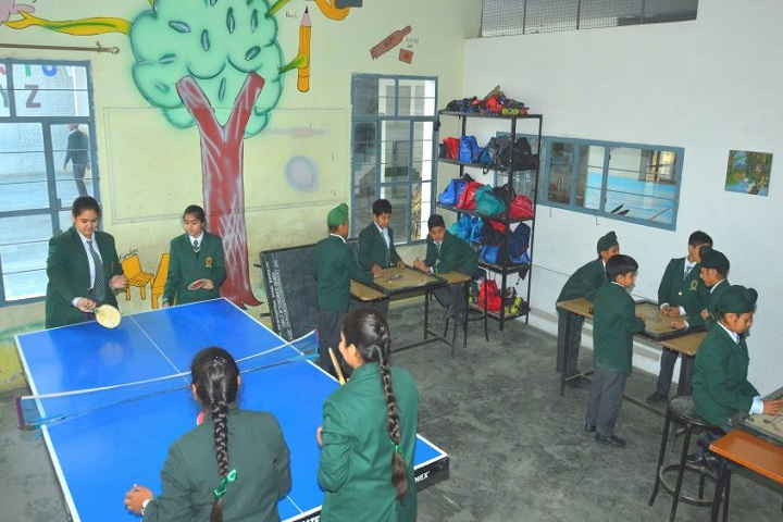 EMM AAR International School-Indoor Games