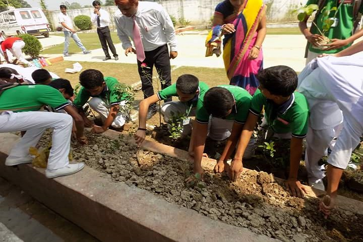 Holy Mary International School-Tree Planation