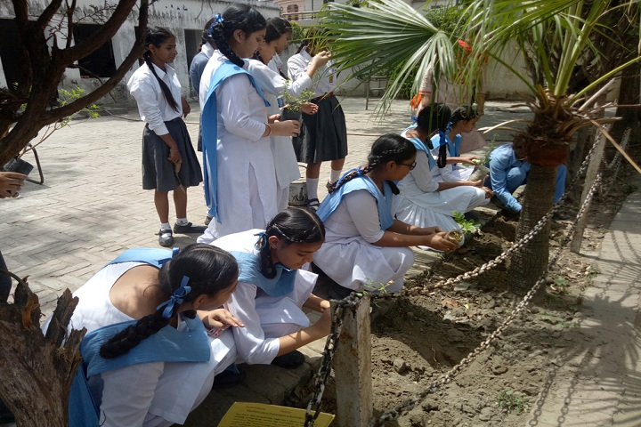 Guru Amar Dass Public School-Tree Plantation