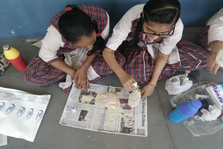 H M DAV Public School-Art