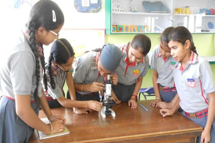 Indian Public School-Biology Lab