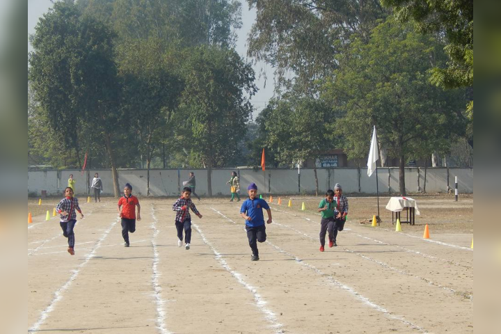 Sport Day Activity