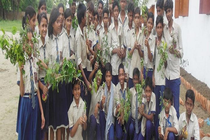 Infant Jesus Academy-Tree Plantation