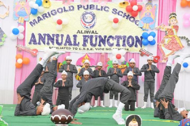 Marigold Public School-Annual Function