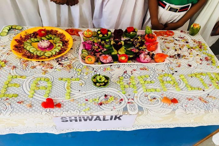 Meera Public School-Vegetable Crafting