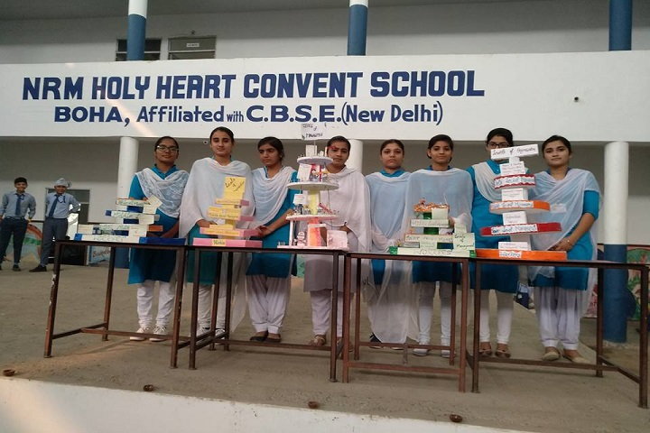 NRM Holy Heart Convent School-Science projects