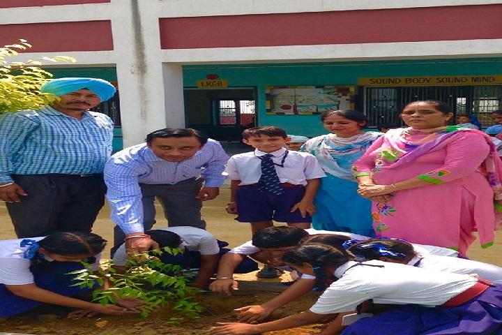 Nankana Sahib Senior Secondary School-Green Day