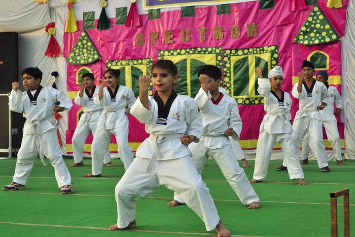 Narain Smart School-Karate