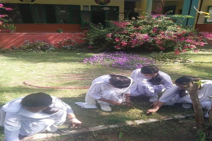 Netaji Model School-Gardening