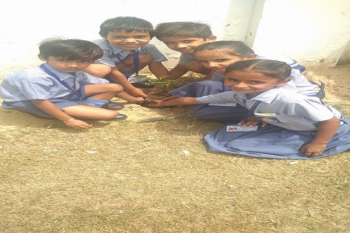 NRM Holly Heart Convent School-Tree Plantation