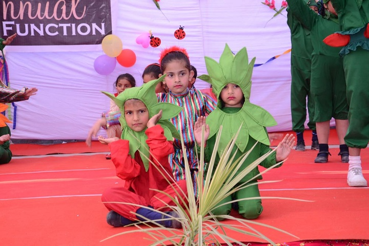 Punjab Convent School-Primary Section Act Performance