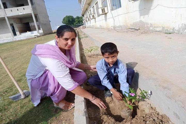 Punjab Convent  School -Plantation