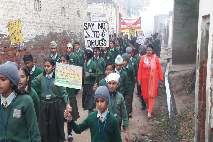 Punjab Convent School-Rally
